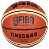 Gala Chicago BB7011S basketbalová lopta č. 7
